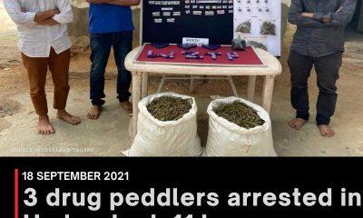 3 drug peddlers arrested in Hyderabad; 11 kg marijuana, cash seized